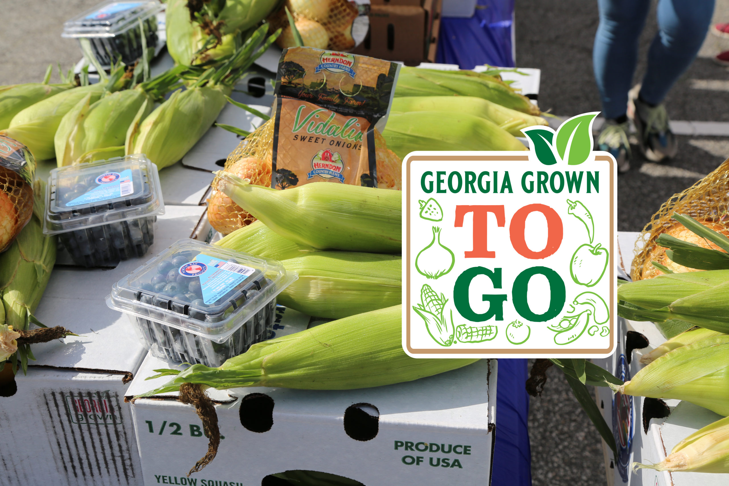 Georgia Grown To Go Box
